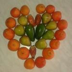 altro cuore di frutta autunno