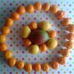 pianeta di frutta autunno